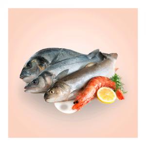 FISH/SEA FOOD